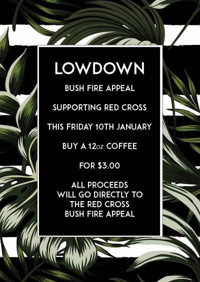 lowdown-Bushfires